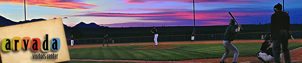 AVC Summer Baseball Header