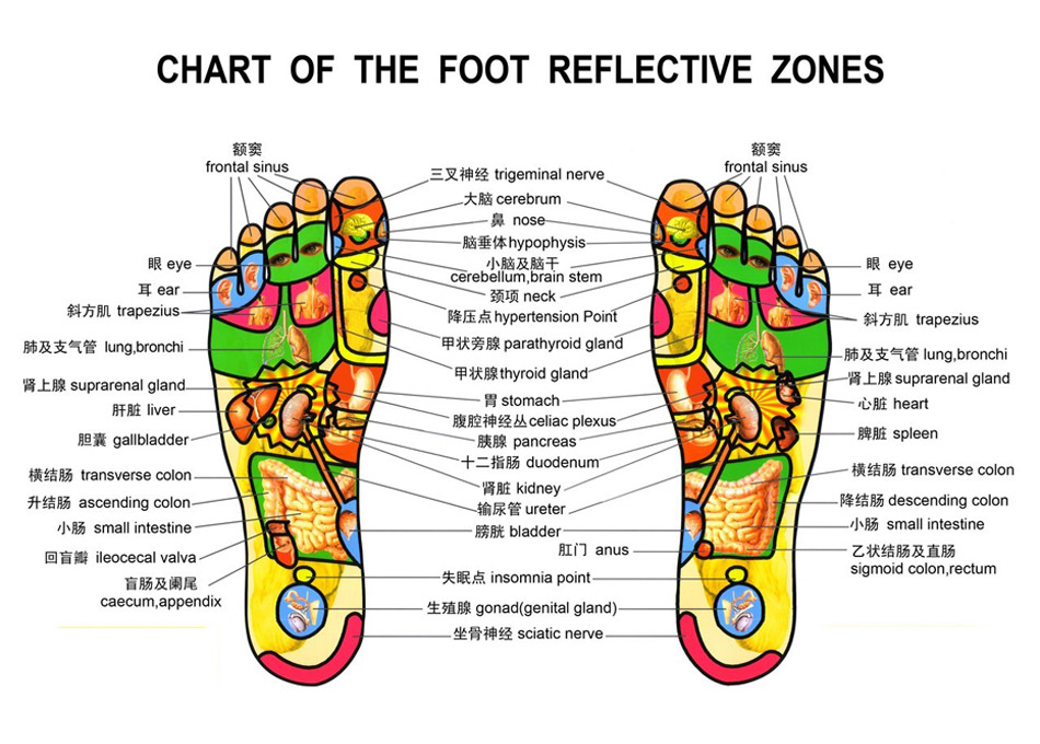 Foot massage chart arvada chamber of commerce